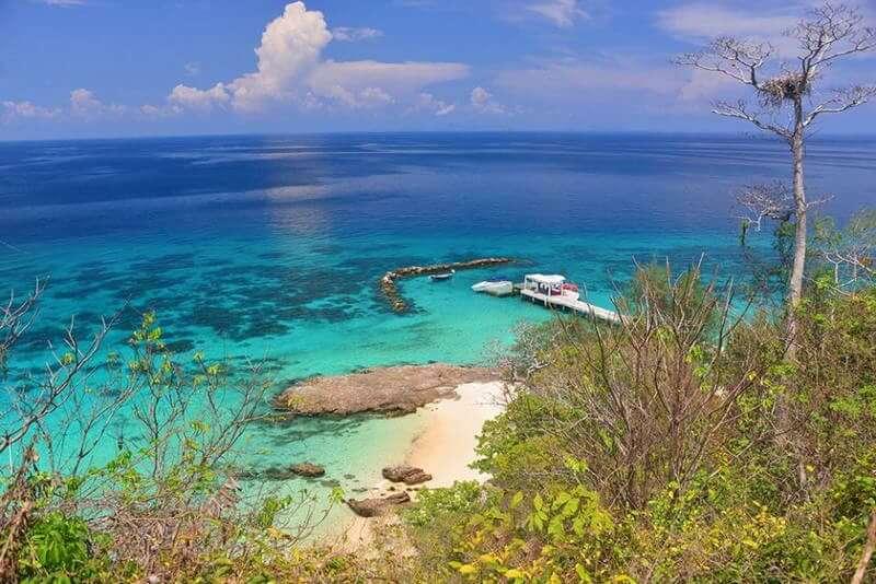 マイトン島 イルカ