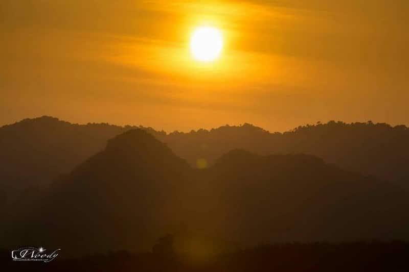 カオソック国立公園 ラフレシア