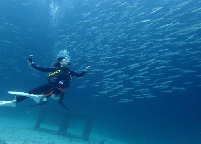 ラチャノイ島体験ダイビング
