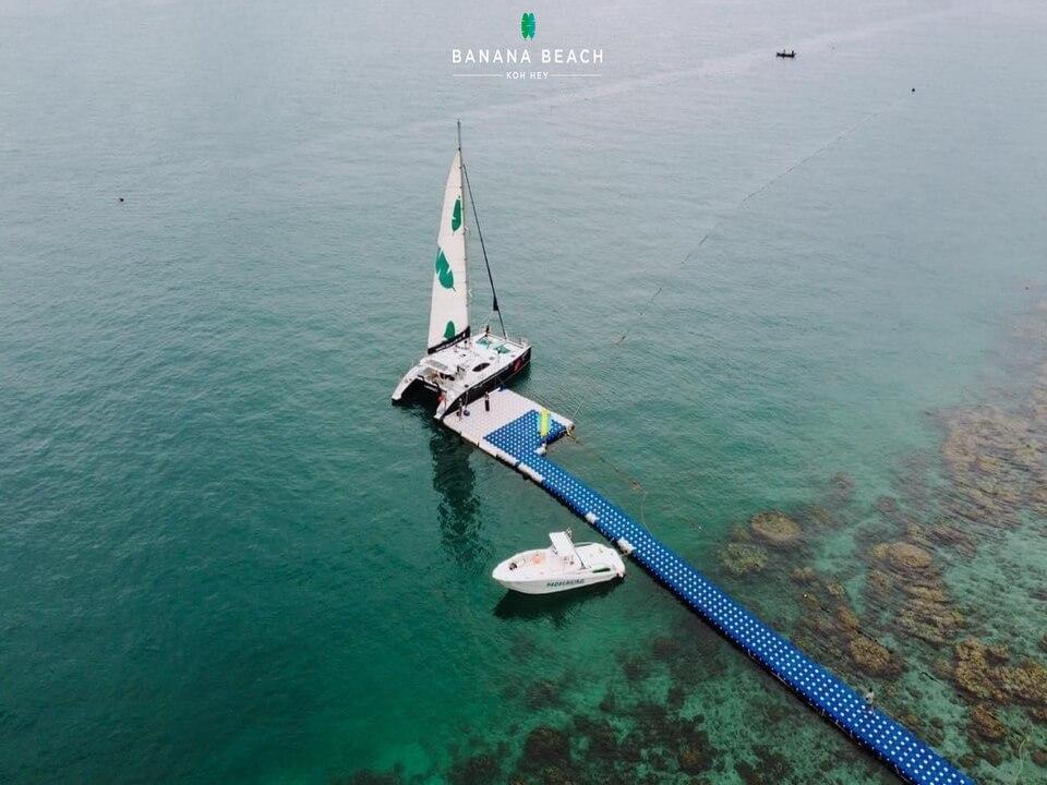 コーラル島 ダイビング